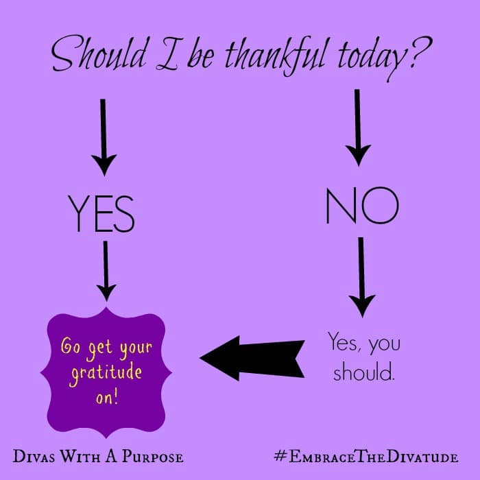 Go Get Your Gratitude On