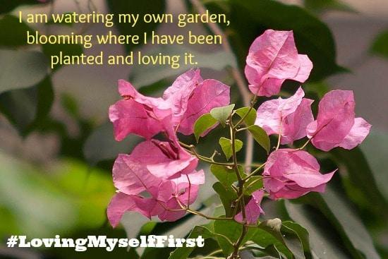 Watering my Own Garden