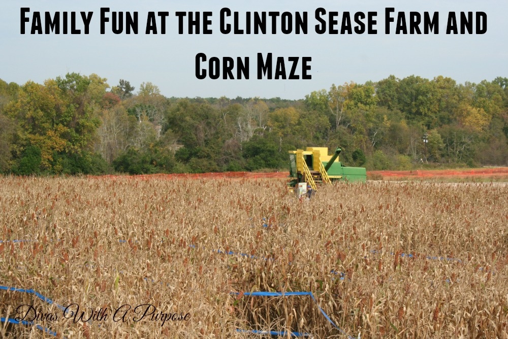 Family Fun at the Clinton Sease Farm and Corn Maze