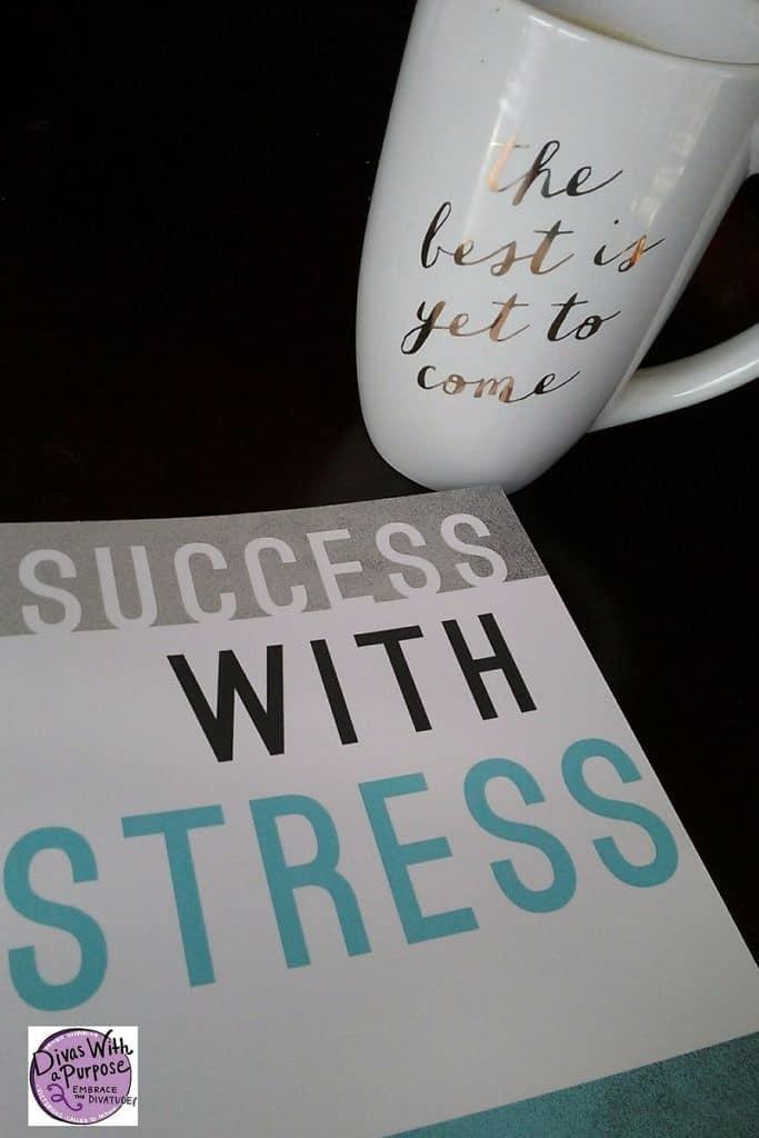 Success With Stress Jae Ellard
