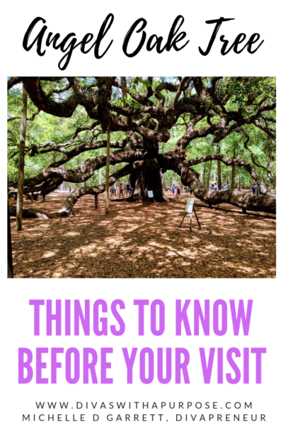 Visiting Charleston, SC? You have to see the 400-year-old Angel Oak Tree. Here is all the information you must know before your visit. #angeloaktree #charlestonsc