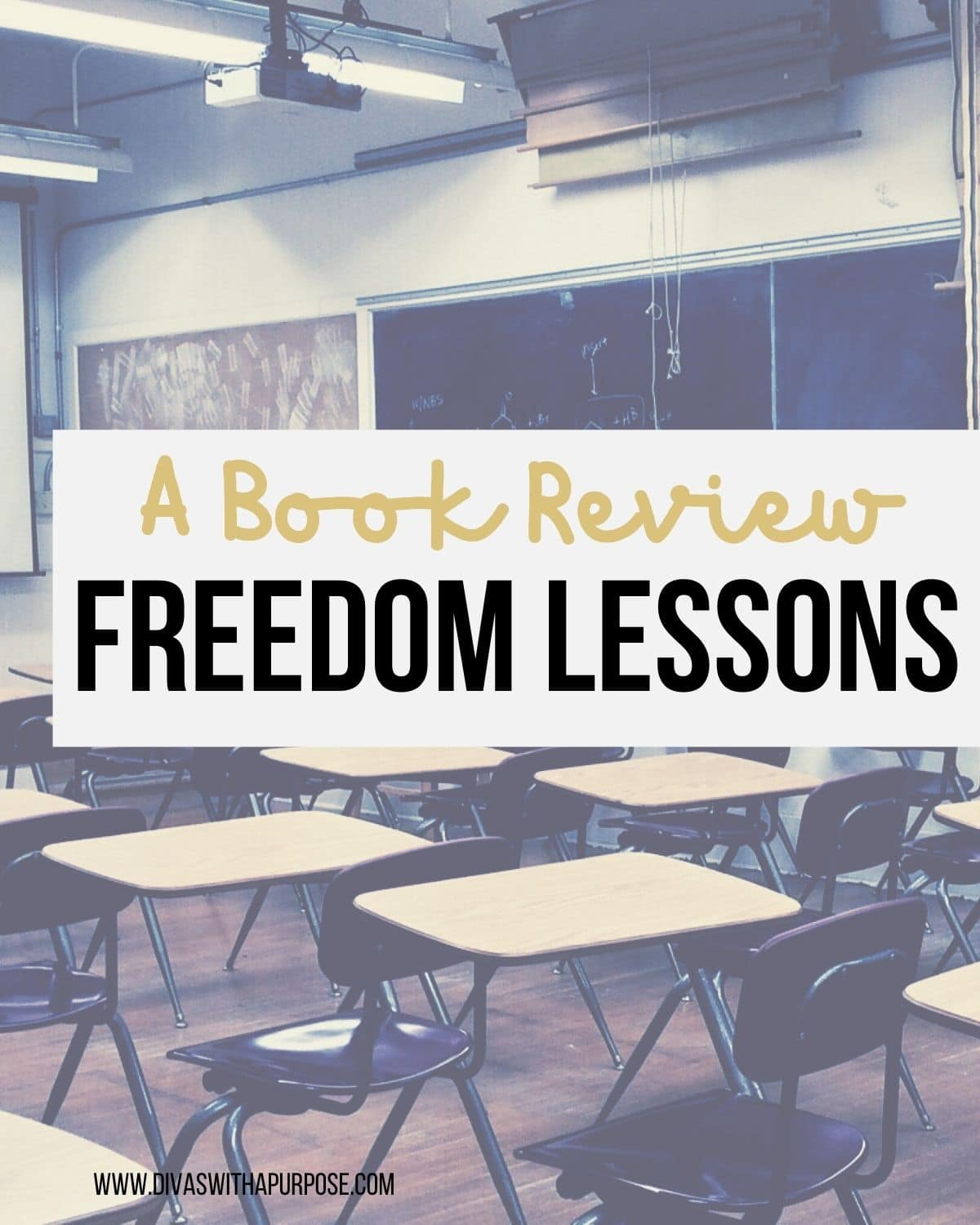 Freedom Lessons by Eileen Sanchez
